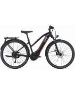 Liv Amiti E+ 2 2021 Womens Electric Bike