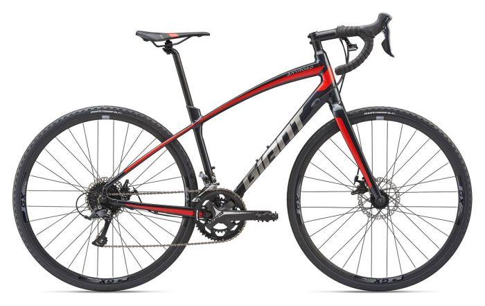 Giant AnyRoad 2 2019 Bike