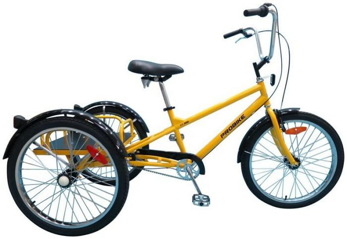 Probike XT-900 Industrial 2021 Tricycle