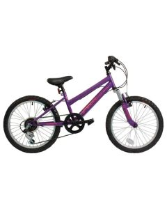 Falcon Violet 20-Inch 2017 Girls Bike