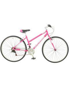 Falcon Modena 2020 Womens Bike
