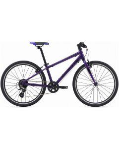 Giant ARX 24-Inch 2020 Bike