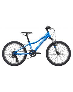 Liv Enchant 20-Inch 2020 Girls Bike