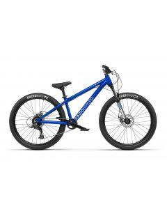 Radio Fiend 2021 Bike