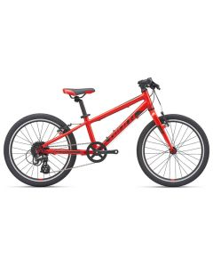 Giant ARX 20-Inch 2020 Kids Bike