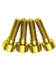 A2Z Ti Hayes Lever Clamp Bolts (4 Pieces)