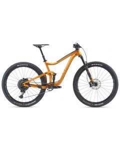Giant Trance 1 29er 2019 Bike