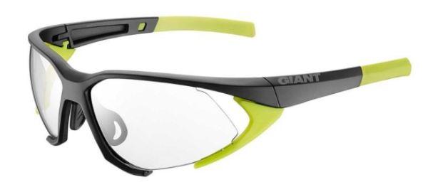 Giant Swoop Sunglasses